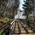 Winter Shadows At The Bridge by Susie Peek
