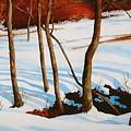 Winter Shadows by Faye Ziegler
