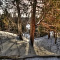 Winter Shadows by Desmond Bell