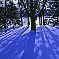 Winter Shadows by Tom Reynen