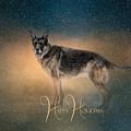 Winter Shepherd - Happy Holidays by Jai Johnson
