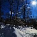 Winter Solitude  by Sean  Jungo