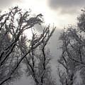 Winter Solstice Utah by Brett Winn