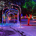 Winter Spirit At Locomotive Park by Brad Stinson