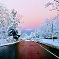Winter St by Kelly Sullivan
