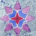 Winter Star by Paula Anthony