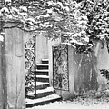 Winter Steps At The Vanderbilt In Centerport, Ny by Alissa Beth Photography