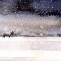 Winter Storm by Paul Sachtleben