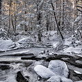 Winter Stream by Erika Fawcett