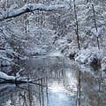 Winter Stream by Lila Fisher-Wenzel