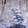 Winter Stream by Ron Christie