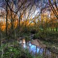 Winter Stream Sunset by Nigel Bangert