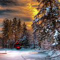 Winter Sun by David Patterson