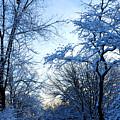 Winter Sunrise II by Dimitri Meimaris