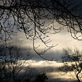 Winter Sunrise by Liz Vernand