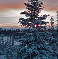 Winter Sunrise by Rick  Monyahan
