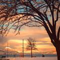 Winter Sunrise by Tara Turner