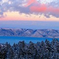Winter Sunset by Carol Dyer