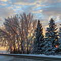 Winter Colors. by Viktor Birkus