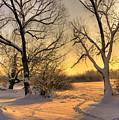 Winter Sunset by Jaroslaw Grudzinski
