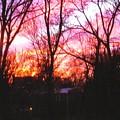 Winter Sunset by Jonathan Carter
