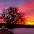 Winter Sunset Panorama by Rima Biswas