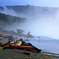 Winter Surf On Vancouver Island by Christopher Branting