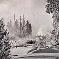 Winter Thermal Steam - Yellowstone by Stuart Litoff