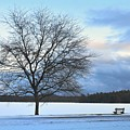 Winter by Toshihide Takekoshi