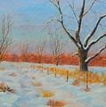 Winter Trail Carter by John Carter