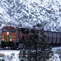 Winter Train by Jeff Swan