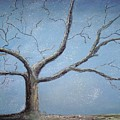 Winter Tree by Sarah Rachel Evans