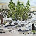 Winter Trees by Olga Silverman