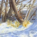 Winter Trunks by David King