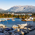 Winter Vancouver by Alexis Birkill