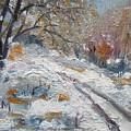 Winter I by Vesna Martinjak