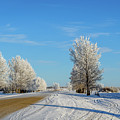 Winter In Saskatchewan by Viktor Birkus