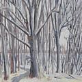 Winter Walk by Robert P Hedden