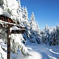 winter way in the Upper Harz by Andreas Levi