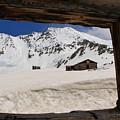 Winter Window View by Tonya Hance