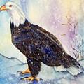 Winter Wonder by Gina Hall