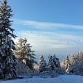 Winter Wonder  by Natalie Barrow