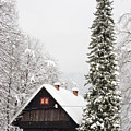 Winter Wonderland by Ian Middleton