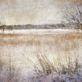 Winter Wonderland II by Robert Brown