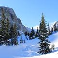 Winter Wonders by Tonya Hance