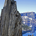 Winter Wood Crater Lake Oregon by Kristen Vota