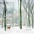 Winter Woodland by Jessica Jenney