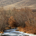 Winter Yakima River With Hills And Orchard by Carol Groenen