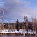 Winter Yellowstone National Park by Thomas R Fletcher