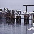 Winterized by Albert Seger